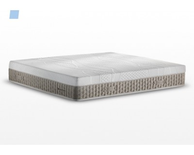 Must Foam Talalay - Idormibene
